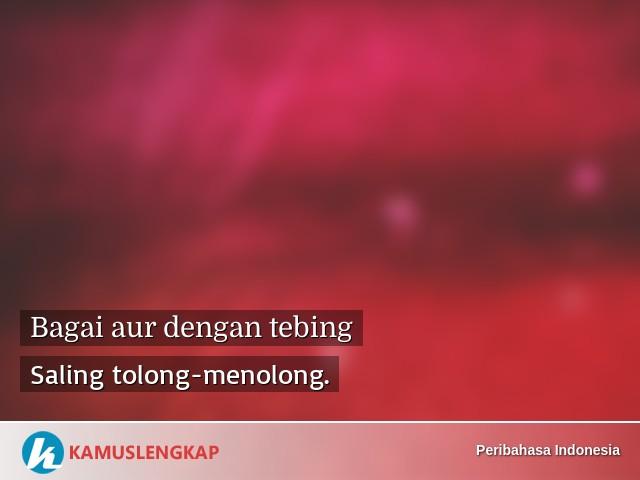 Arti Peribahasa Bagai Aur Dengan Tebing Dalam Kamus Peribahasa Indonesia Terjemahan Kamus Lengkap Online Semua Bahasa