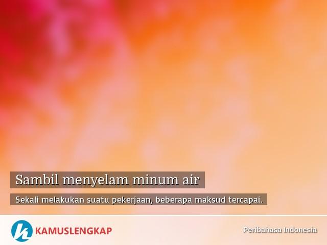 Arti Peribahasa Sambil Menyelam Minum Air Dalam Kamus Peribahasa Indonesia Terjemahan Kamus Lengkap Online Semua Bahasa